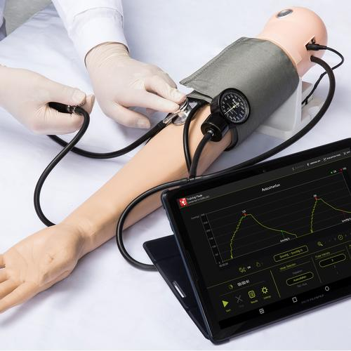 Pulse and BP Assessment Simulator, 3012943, Blood Pressure