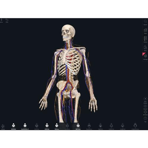Complete Anatomy – Educator License, 10261 [CA-EDU], Complete Anatomy