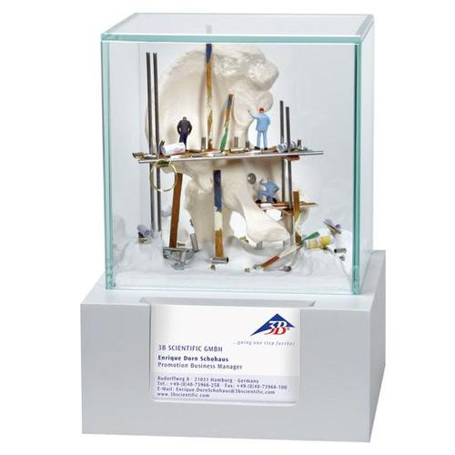 finest selection 122b8 a3148 Hip Display Case with Business Card Holder