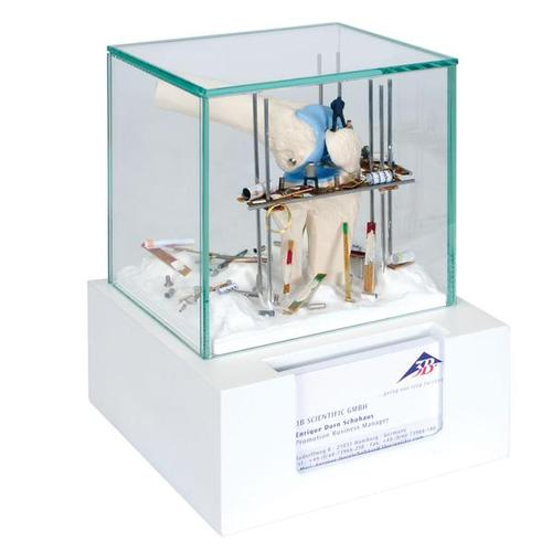 Knee display case with business card holder w23054 3b scientific knee display case with business card holder 1006535 w23054 anatomical construction sites colourmoves