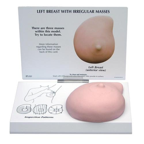 Left Breast Model with Irregular Masses, 1019558 [W33385], Breast Models