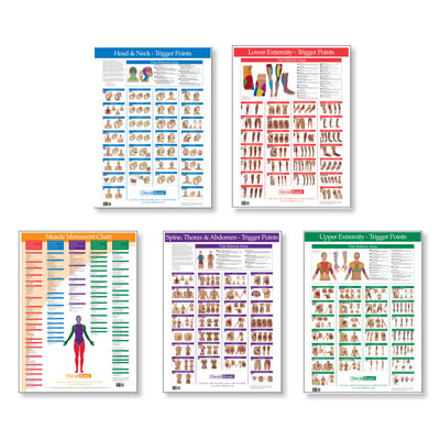 Trigger Point Charts Complete Set of 5, W41172C5, Acupuncture