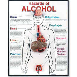 an essay on the pros and cons of alcoholism Pros and cons of substance abuse dawn provance hmsv 220 january 1, 2013 there are many pros and cons of substance abuse, alcoholism and drug abuse can be.