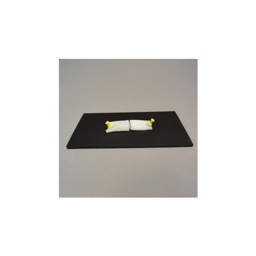 Specimen mounting pad, 1019688 [W44929], Options