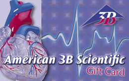 Gift Card From the Heart - $250.00, XGC10501C, Gift cards