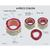 4 Piece Colon with Pathologies, 1019555, Digestive System Models (Small)