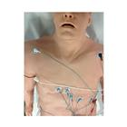 Simulator 12-Lead Arrhythmia with Manikin Overlay – Zoll, Large, 1020845, BLS Adult