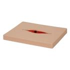 Dehisced Wound Board, light, 1022889, Replacements
