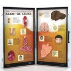 Alcohol Abuse Consequences 3-D Display, 3011542, Drug and Alcohol Education
