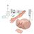 Nursing Plus Kit, 8000873 [3011611], Simulation Kits (Small)