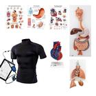 "Wearable Auscultation Training Set ""Intro"" with SimShirt, 8000997, Simulation Kits"