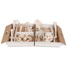 Disarticulated Half Human Skeleton Model, Loosely Articulated Hand & Foot - 3B Smart Anatomy, 1020156 [A04/1], Disarticulated Human Skeleton Models
