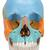 Beauchene Adult Human Skull Model, Didactic Colored Version, 22 part - 3B Smart Anatomy, 1000069 [A291], Human Skull Models (Small)