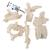 5 Human Vertebrae, Loosely Threaded on Nylon (atlas, axis, cervical, thoracic, lumbar) - 3B Smart Anatomy, 1000148 [A75/1], Vertebra Models (Small)