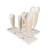 "Human Tooth Models Set ""Classic Series"", 5 Models  - 3B Smart Anatomy, 1017588 [D10], Dental Models (Small)"