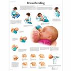 Breastfeeding Chart,VR1557L