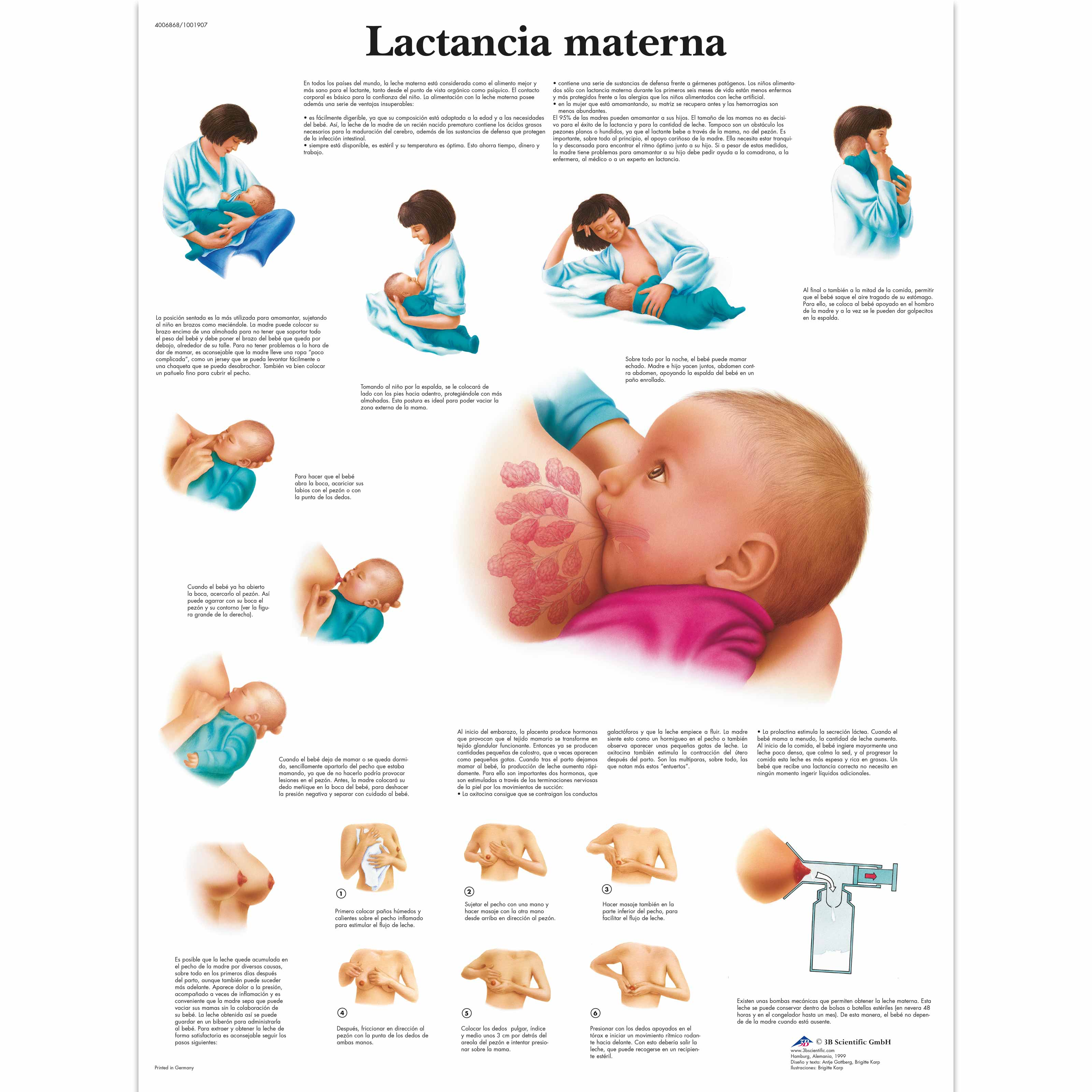 Lactancia Materna p 1366 3083 further Radiationsafetymanual besides Fire Safety Aag Se Surksha In Hindi furthermore Moral Education further Positive Behavior Clipart. on safety posters