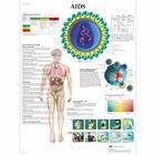 AIDS, 50x67 cm, Versao Papel,VR5727UU