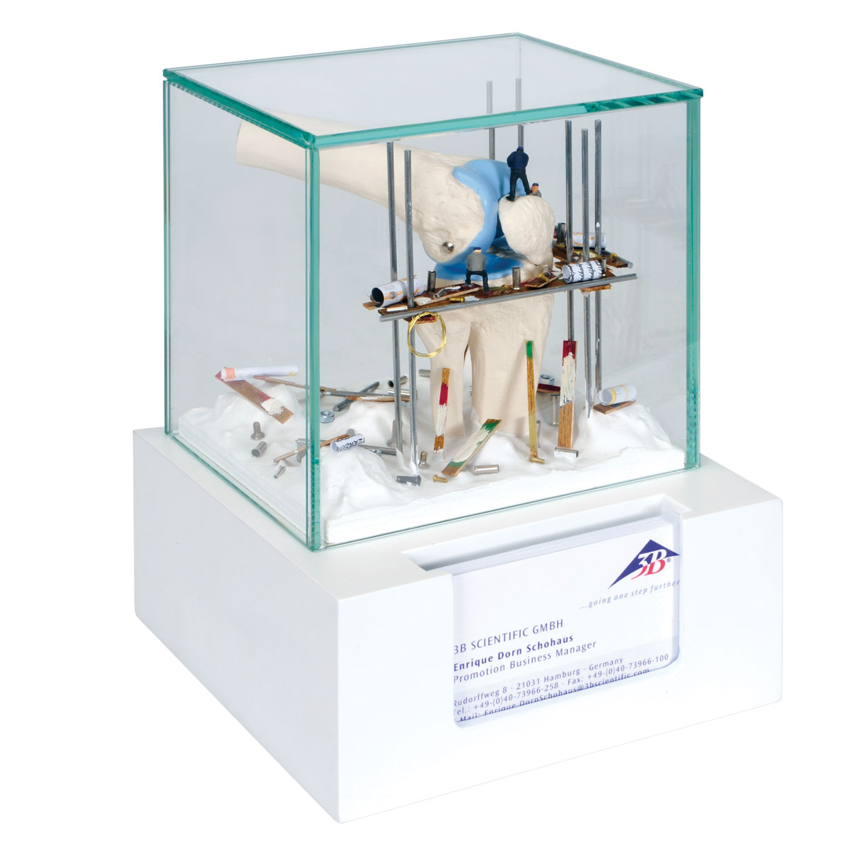 Knee Display Case with Business Card Holder - W23054 - 3B ...