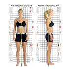 Postural Analysis Grid Chart The Original 3 x 7 ft., W41170, Body Composition and Measurement