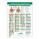 Trigger Point Chart Upper Extremity, W41172UE, Therapy Books