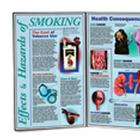 Effects & Hazards of Smoking, 3004623 [W43064], Tobacco Education