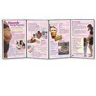 Hazards During Pregnancy Folding Display, 3004697 [W43153], Pregnancy and Childbirth Education