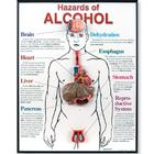 Hazards of Alcohol 3D Framed Chart,W43165
