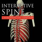 W46625: Primal Pictures - Interactive Spine: Chiropractic Edition, English