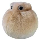Fat Cell (Adipocyte) Giant Microbe,W53287