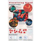 Visualizing Blood Poster, Laminated,W55680