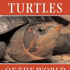 Turtles of the World, W56505, Herpetology (Amphibians and Reptiles)