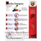 Cardiac Emergency Chart - Laminated, 1018419 [W59503], Anatomical Charts